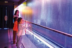 Expo del Agua 2008
